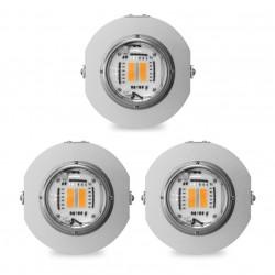 430 W Spot LED Pflanzenlampen-Packung