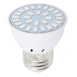 6W E27 Grow Lightbulb